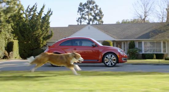 The Dog Strikes Back - VW